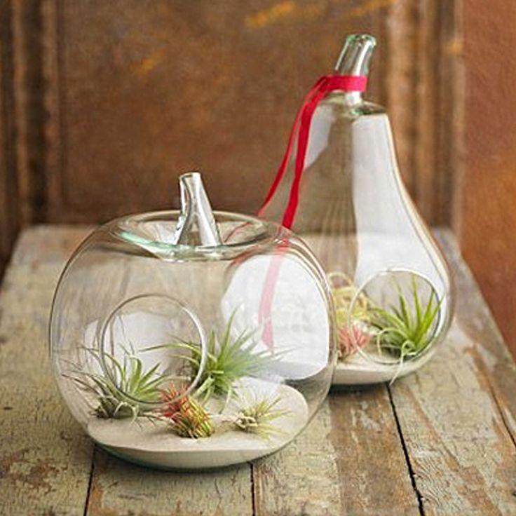 Pas cher 1 pc Apple poire Vase de verre de cristal dîner planteur Terrarium Container hydroponique Pot Home Decor mariage, Acheter vases de qualité directement des fournisseurs de Chine: Condition: Marque nouvell