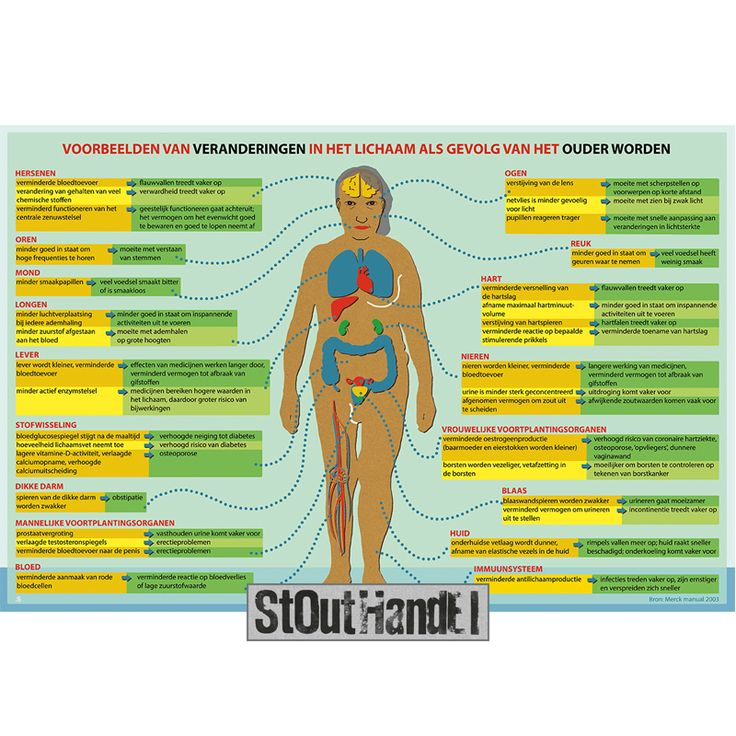 Copyright tekst: Nursing voor Verpleegkundigen | Copyright beeld: Stouthandel Illustraties  #stouthandel #nursing #infographic #infogram #ouderdom #oldage #growingolder #humanbody #menselijklichaam #body #lichaam