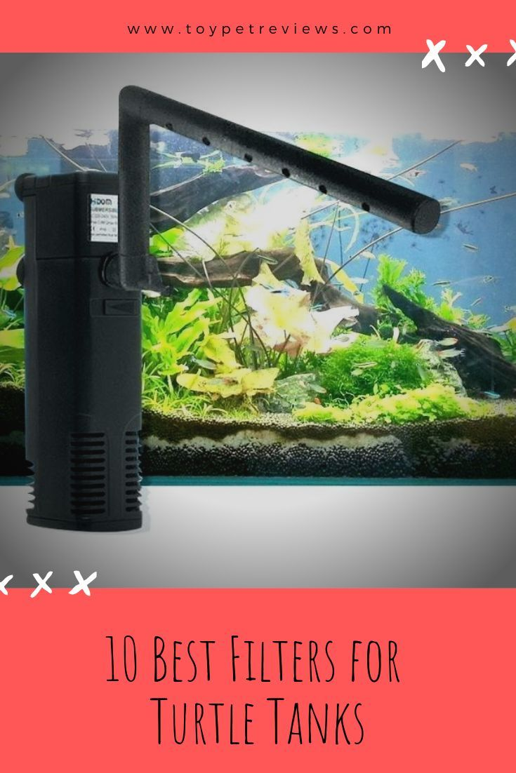 5 Best Filters For Turtle Tanks And Safe Waters Turtle Tank Filters Water Turtle