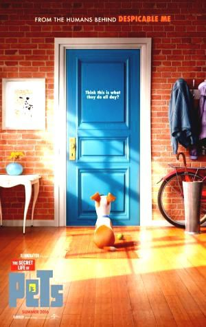 Voir now before deleted.!! Streaming The Secret Life of Pets free Filme Regarder The Secret Life of Pets Film TheMovieDatabase Play hindi Peliculas The Secret Life of Pets Stream The Secret Life of Pets filmpje Streaming Online in HD 720p #Youtube #FREE #Movien This is Full