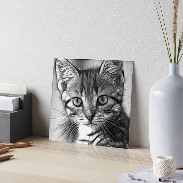 « grey cat - grey kitty - chat gris- chaton gris, from Léa roche paintings » par LEAROCHE