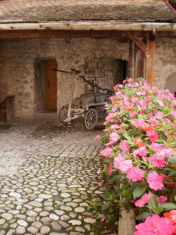 Photograph - Chillon Castle - Lake Geneva by Maria Ernest Fragopoulou