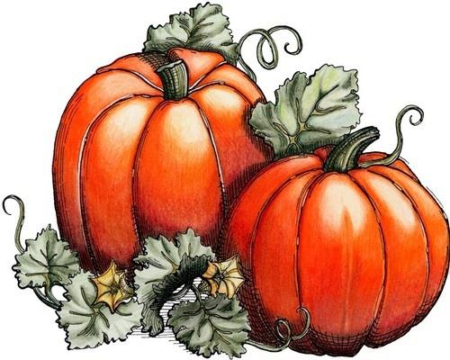222 best images about art lessons: autumn on Pinterest