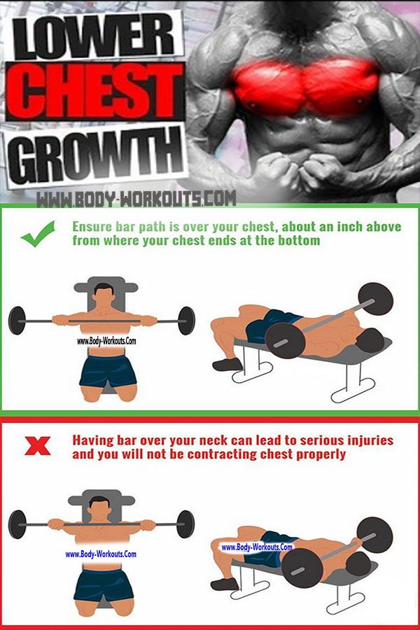 How To Bench Press With Proper Form Www Body Workouts Com Bench Press Big Muscles Chest Workout For Men