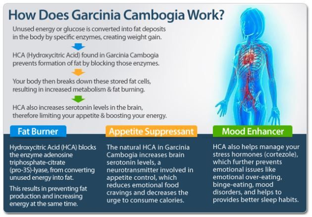 Garcinia cambogia reviews: Do you want to lose weight fast? Read our review on the best garcinia cambogia extract on the market. http://garcinia-reviews.co