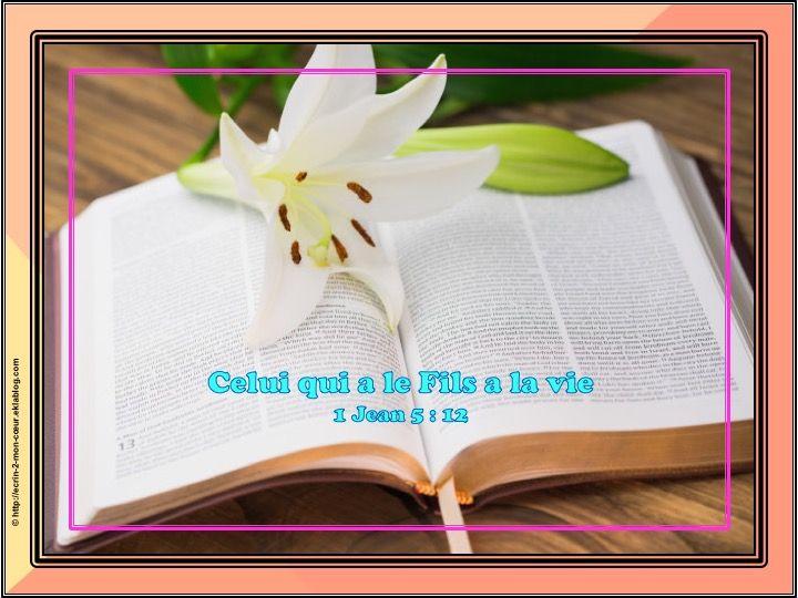 Pin On Bible En Francais