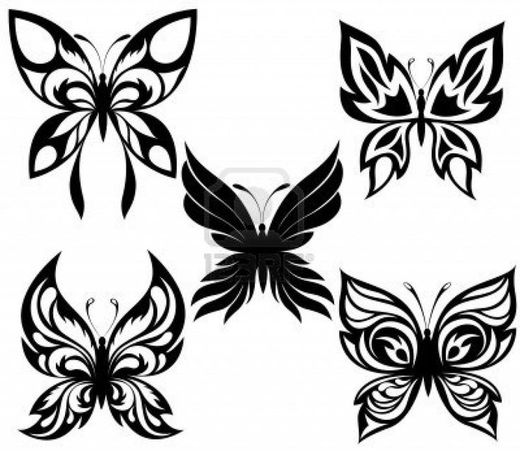 1000 images about butterfly walk on pinterest butterflies tribal tattoo designs and skull. Black Bedroom Furniture Sets. Home Design Ideas