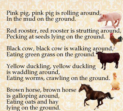 Подборка стишков из двух строк о домашних животных на английском языке