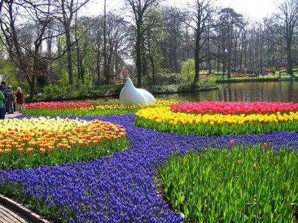 Nice Keukenhof Garden Holanda