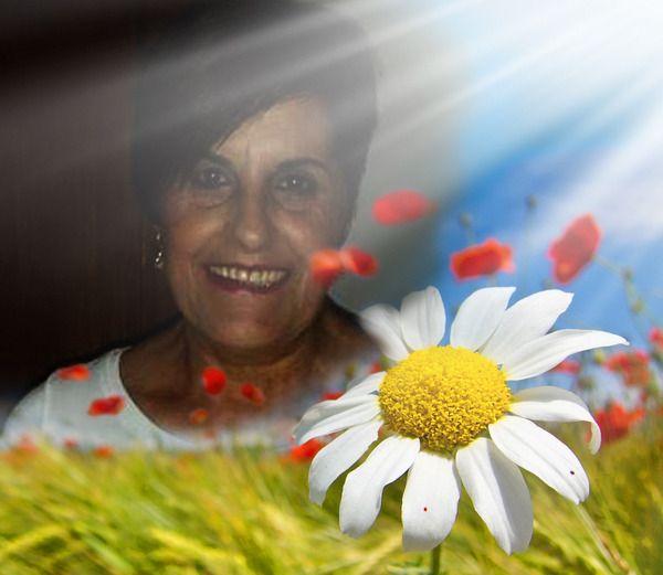 Nuovo | PhotoFaceFun.com - effetti foto online, effetti speciali foto, fotomontaggio online, fotoritocco, Modifica fotografico online