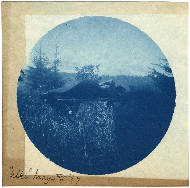 Vintage Cyanotype from 1897.