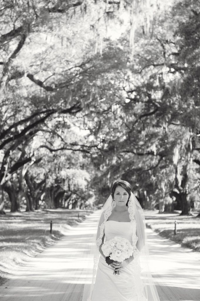 Boone Hall Bridal Portraits Sally Freshour Photography www.sallyfreshour.com