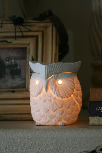 Owl Scentsy Burner. (I love how I'm in this picture) Hahaha!