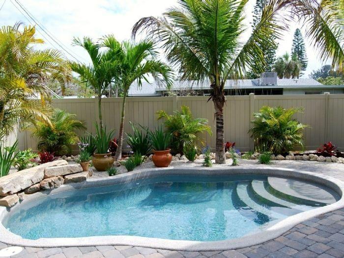 aménagement jardin avec piscine en forme de rein et palmier