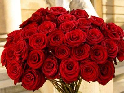 imagenes de ramos de rosas hermosas