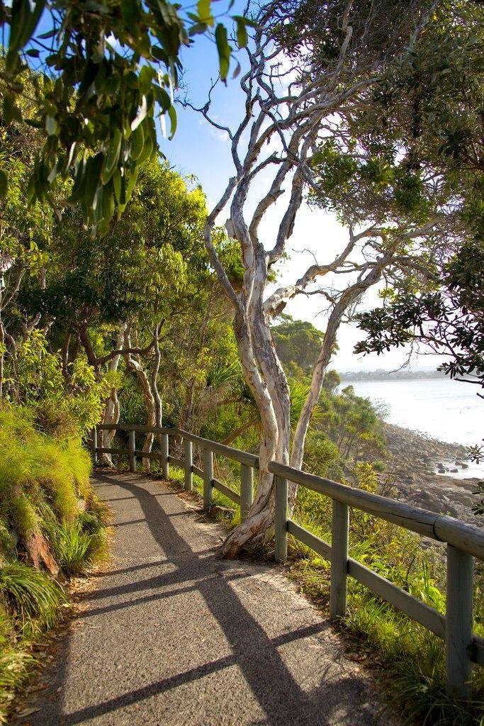 Pathway beside the sea (Noosa National Park, Queensland, Australia) by John Schilling