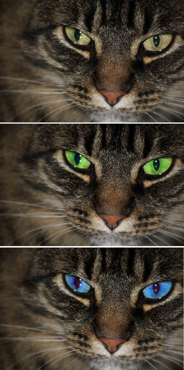Online eye color changer - Using An Online Tutorial I Was Able To Enhance And Change The Eye Color From The