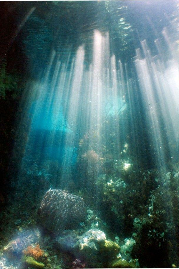 Raja Ampat, Indonesia. #Indonesia: Stunning Photography, Beauty Photography, Sun Ray, Raja Ampat Islands, Scubas Diving, Underwater Photography, Nature Scenes, Ocean Photography, Rajaampat