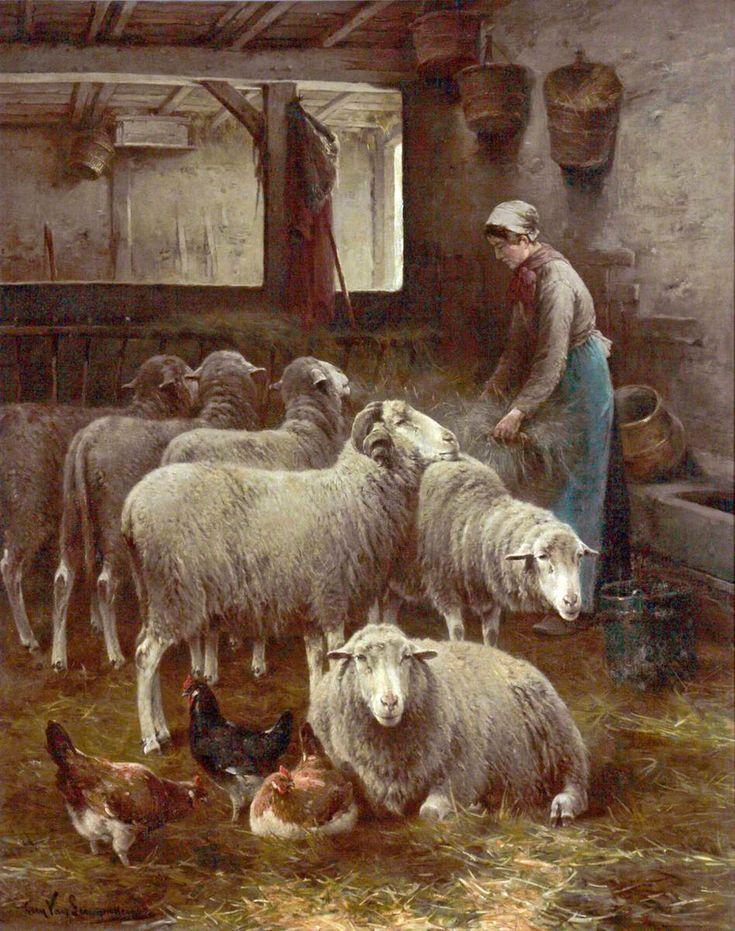 151 Best The Shepherd Ess Images On Pinterest Sheep