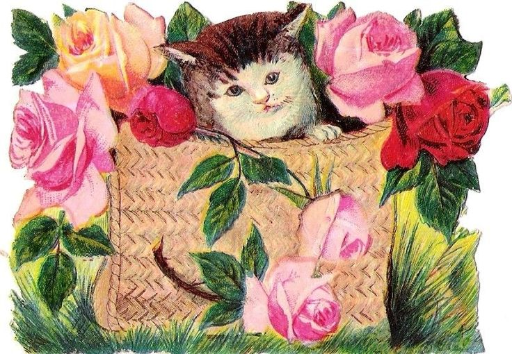 Oblaten Glanzbild scrap die cut chromo Katze cat  10cm  Korb basket Tasche bag