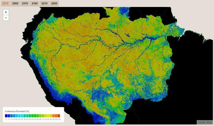 Amazon Rainforest Cover Through Time Amazon Rainforest