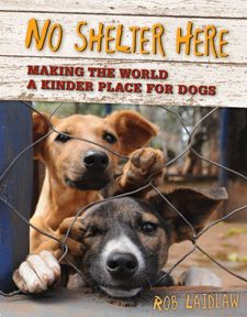 NO SHELTER HERE: MAKING THE WORLD A KINDER PLACE FOR DOGS by Rob Laidlaw Rob Laidlaw's non-fiction book for animal activitst and dog lovers, No Shelter Here is a treasure trove of facts, compelling visuals and engaging true stories. This is the paperback edition.