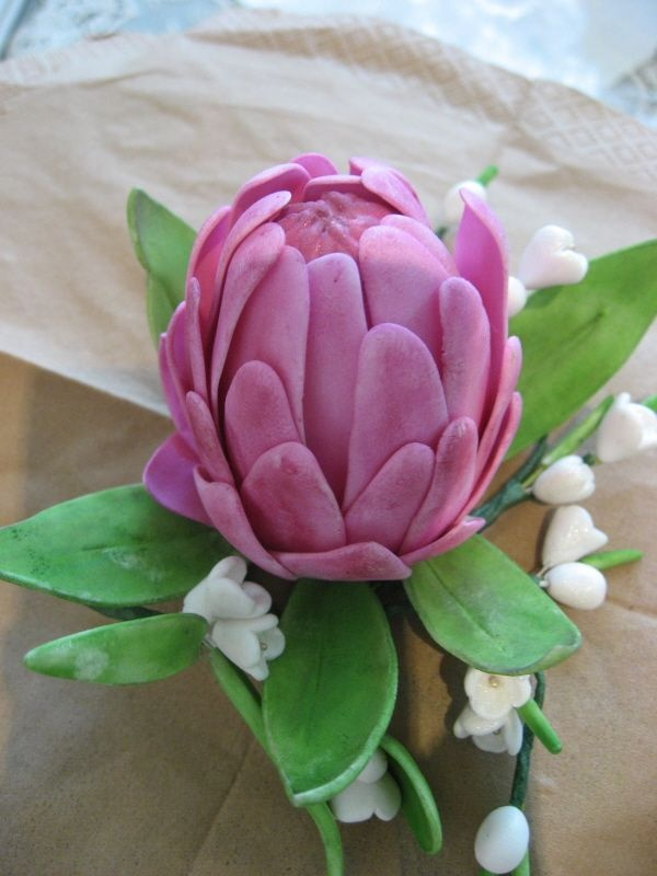Technically not a Banksia, but a Protea. Stunning marzipan/sugar art from http://cakecentral.com/gallery/1193220