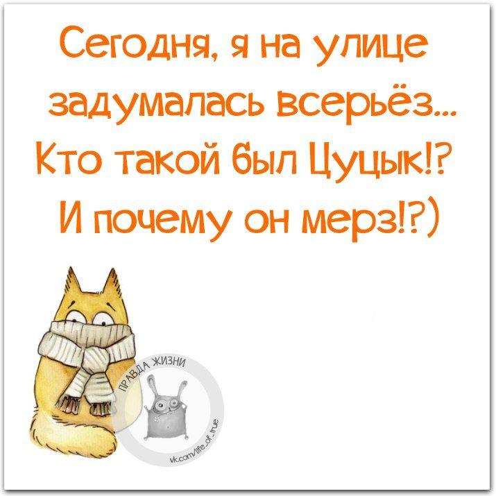 1ZkuIlq7LLs.jpg (715×715)