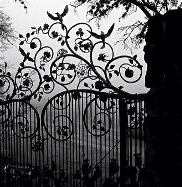 Scroll wrought iron gate