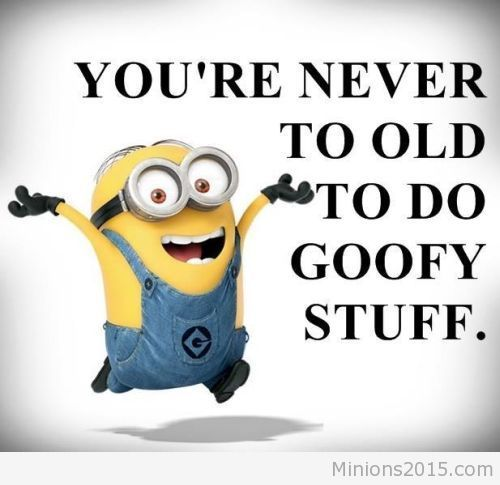 Funny Minion Quotes and Sayings pics