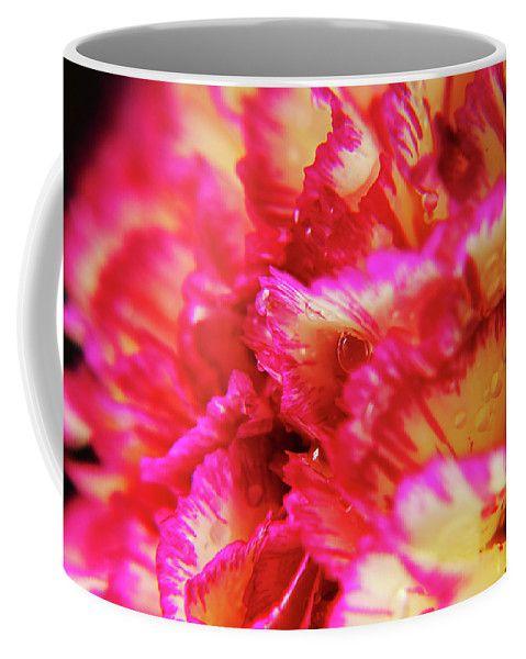 Pink Lace by Mary Raven #flower #macro #beautiful #floral #beauty #closeup #background #nature #romantic #fresh #abstract #graphicdesign #ArtForHome #FainArtPrints #Photographers #FineArtAmerica #FineArtPrints #ForSale #ArtHome #Artdecor #Decor #Homedecor