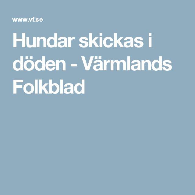 Hundar skickas i döden - Värmlands Folkblad