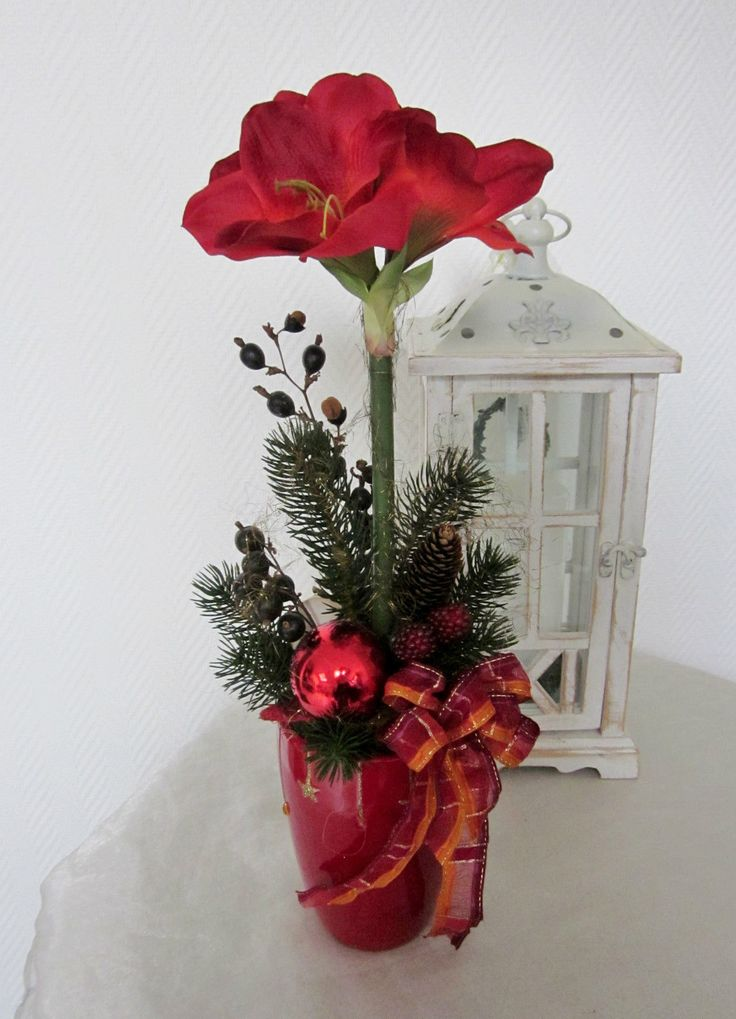 150 best amarylis images on pinterest christmas christmas decor and floral arrangements - Amaryllis dekorieren ...