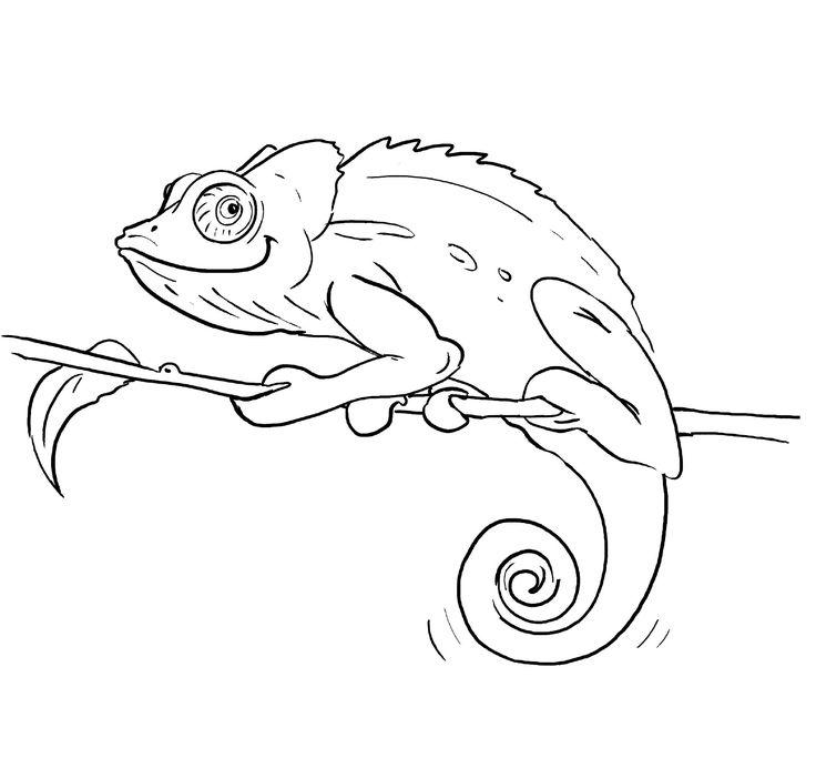 Chameleon Outline Tattoo: 415 Best Images About Zeichnen On Pinterest
