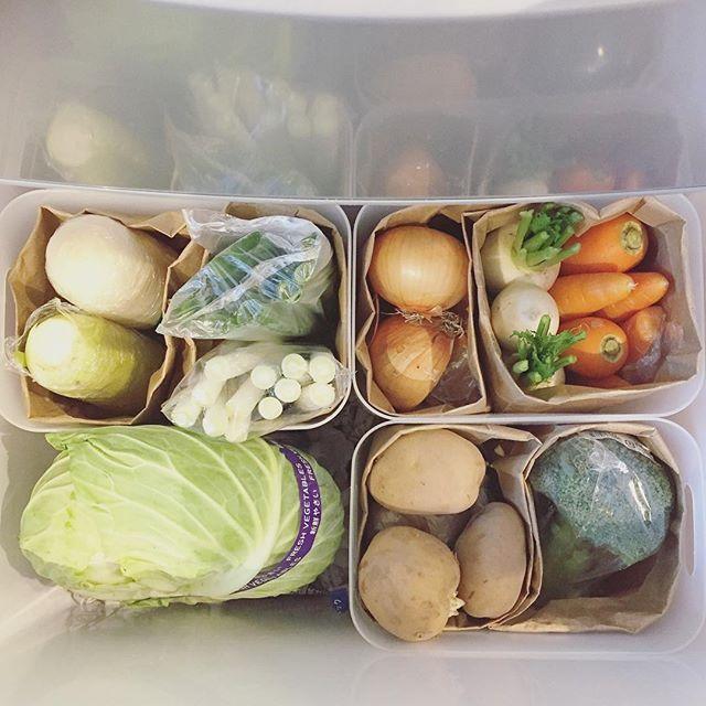 Instagram media by tomoa.jp - 我が家の野菜室事情 ⚑⁎∗✧ おはようございますお日様が気持ち良い朝です❤️朝から#野菜室 のpicで失礼します ・ 昨日野菜室が空になったので、買い足しましたにしてもスーパーの野菜高いですね〜朝市や産直だと手ごろに購入できるのでありがたいです☺️ ・ 野菜室収納は去年から変わらず、PPケースに紙袋て仕切って立て収納です!全て一目でわかるように心がけてます✨ ・ 野菜の割合が変わっても、紙袋なので割合が自由自在!汚れが気になったら取り替えられる!という点が気に入っています☺️ ・ 大根は半分、ネギは3等分に切って、ラップや袋に入れて縦に収納しています! ・ #冷蔵庫 #冷蔵庫整理