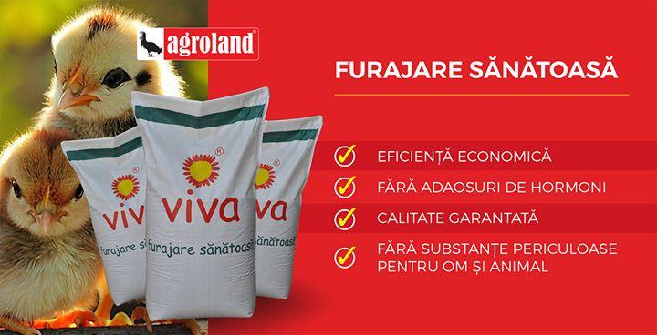 Cele 250 de magazine Agroland vand cantitatile cele mai mari de furaje din Romania. Sute de mii de familii aleg in fiecare an magazinele noastre. Retetele performante de fabricatie si calitatea materiilor prime sunt elementele de baza ale succesului nostru. Avem la vanzare furaje si concentrate PVM - VIVA - pentru pasari porcine ovine si bovine iar colegii nostri din magazine va stau la dispozitie cu toate informatiile necesare!  Click aici pentru oferta: http://ift.tt/2pWK0nI  #agroland…