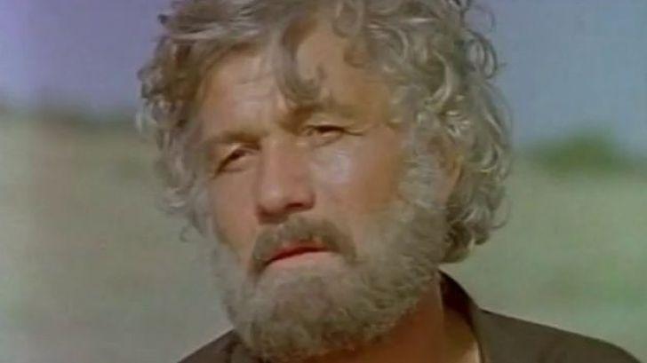Михай Волонтир в роли Будулая.