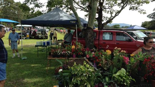 johns river country markets