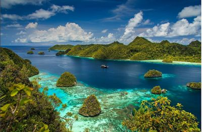 Here, The Thing That Not Many Know About Raja Ampat  | In addition to the National Marine Park of bunaken, Raja ampat is the best place for you to dive. It was so beautiful, people often call it paradise world. Raja ampat has 3/4 species of coral in the world!!  #vacation #destination #attraction #tourist #holiday #sightseeing #holidays #photography #selfie #indonesia #papua #rajaampat #coral #diving