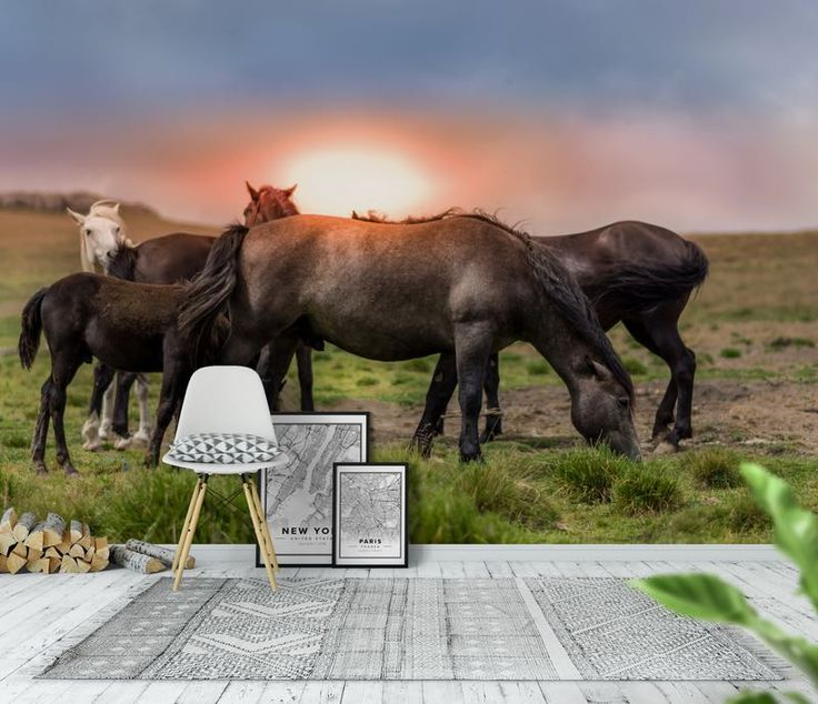 hästar Tapet