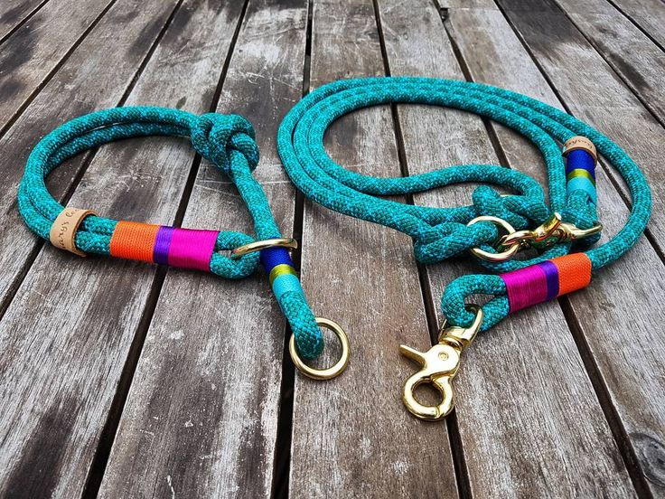#marysleahes #dogleashes #dogleash #dog #dogs #fashion #mops #dalmatiner…