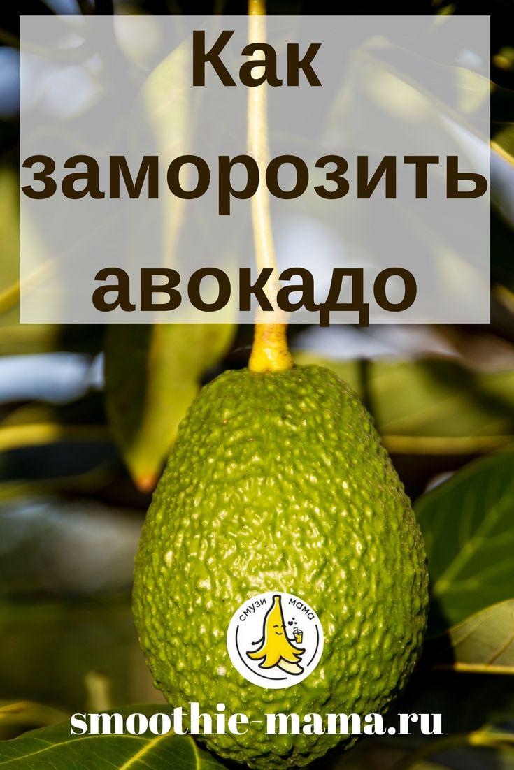 Три способа заморозить авокадо для длительного хранения: в виде кубиков, дольками и пастой. Как это сделать так, чтобы мякоть авокадо не потеряла своих полезных свойств при заморозке, рассказываем у нас на сайте. #avocado #smoothie #recipes #смузимама