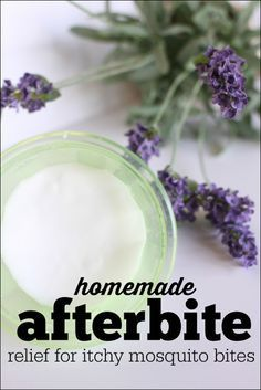 Homemade Afterbite 500x749 Homemade Afterbite (anti itch salve for mosquito bites) from icanteachmychild.com