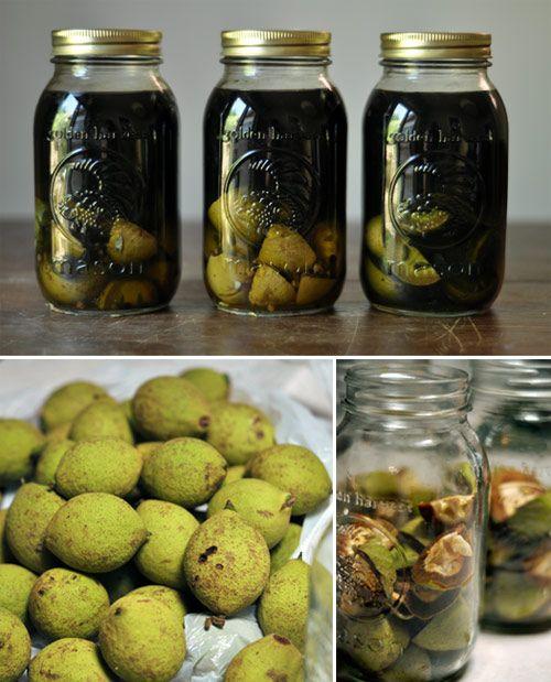 making green walnut liqueur