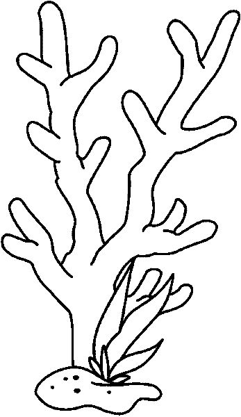 Free Seaweed Drawings Coloring Pages Sketch Coloring Page