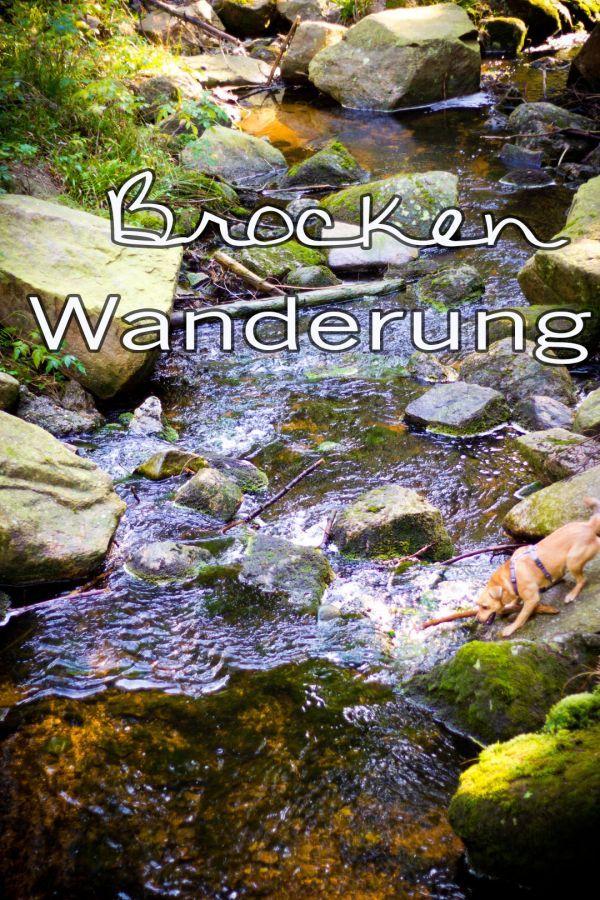 Eine kleine Brockenwanderung   http://travelandlipsticks.de/index.php/de/26-heimat/243-brocken  #harz #nature