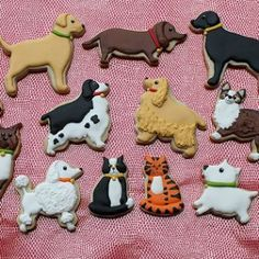 dog cutout cookies - Google Search