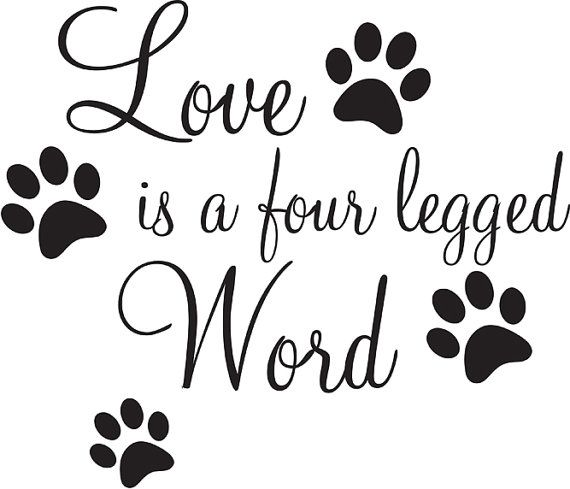 19 best Dogs Quotes and Thoughts images on Pinterest
