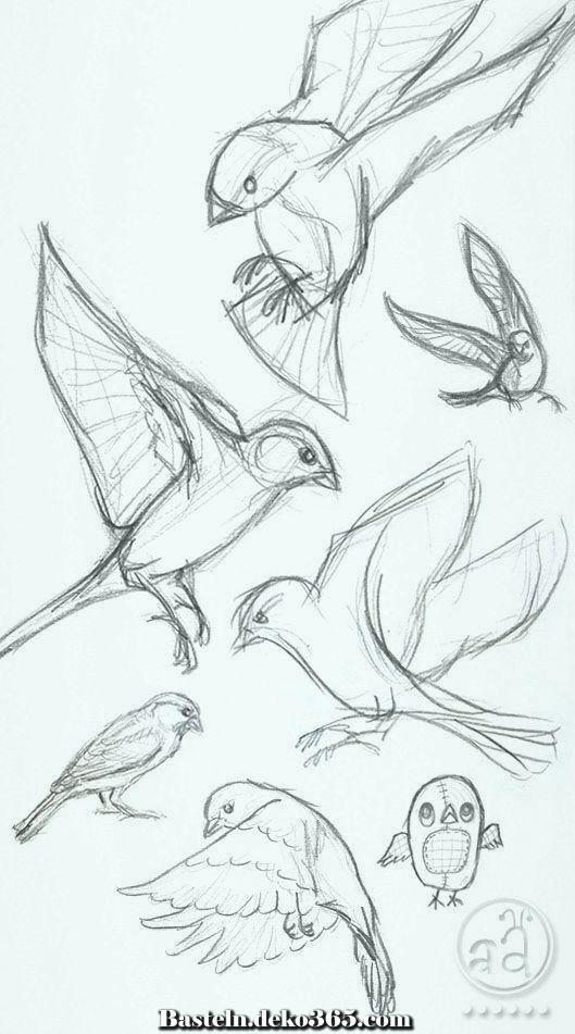 Ausgezeichnet Vogelzeichnung Ideen zu Händen Neuling. Kommen Sie meinen YouTube-Sender, um da…
