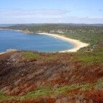 Hiking through Bouddi National Park on Marie Byles Lookout to Bullimah Lookout bushwalking track